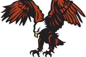 Eagle logo (6/2020)