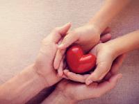 Hands holding heart (4/2020)