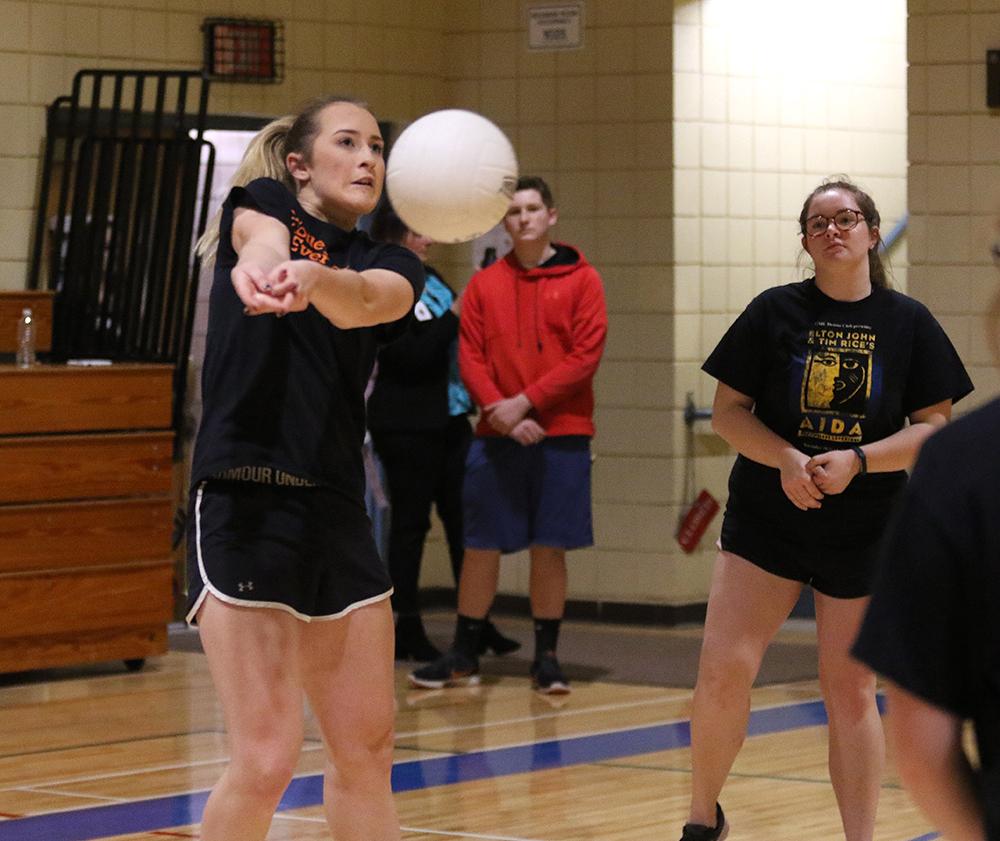 Senior-staff volleyball 2017